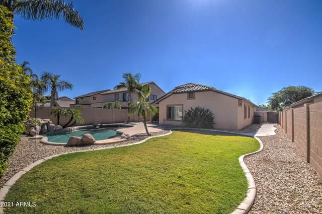 3450 E Phelps Street, Gilbert, AZ 85295 (MLS #6305129) :: Klaus Team Real Estate Solutions