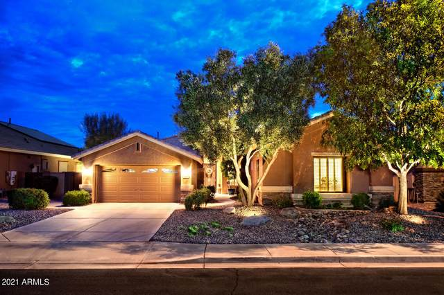 3953 E Meadowview Drive, Gilbert, AZ 85298 (MLS #6307019) :: Yost Realty Group at RE/MAX Casa Grande