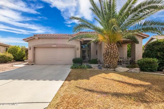 4591 E Sycamore Court, Gilbert, AZ 85298 (MLS #6307596) :: Zolin Group