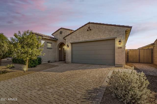 231 E Pasaro Drive, Phoenix, AZ 85085 (MLS #6307770) :: Yost Realty Group at RE/MAX Casa Grande