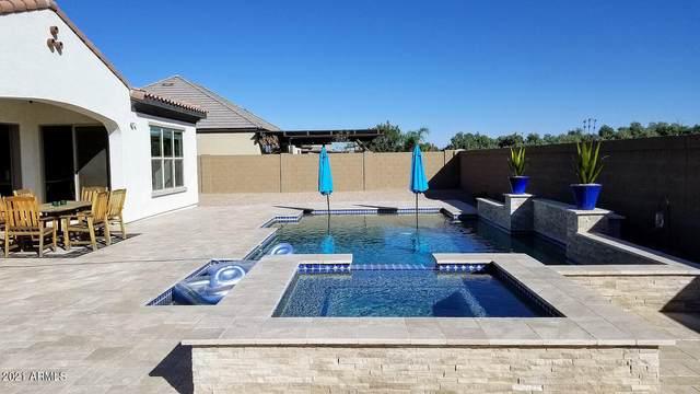 22457 E Sentiero Court, Queen Creek, AZ 85142 (MLS #6308283) :: The Luna Team