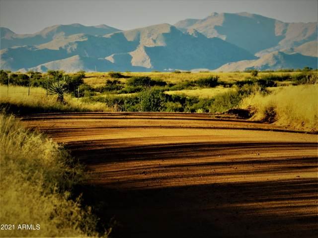 TBD E Council Rock Road, Saint David, AZ 85630 (MLS #6309600) :: Klaus Team Real Estate Solutions