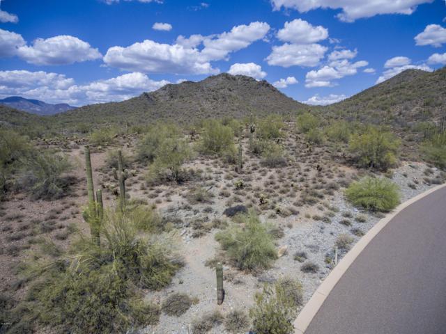 36480 N Rackensack Road, Cave Creek, AZ 85331 (MLS #4709788) :: The Laughton Team
