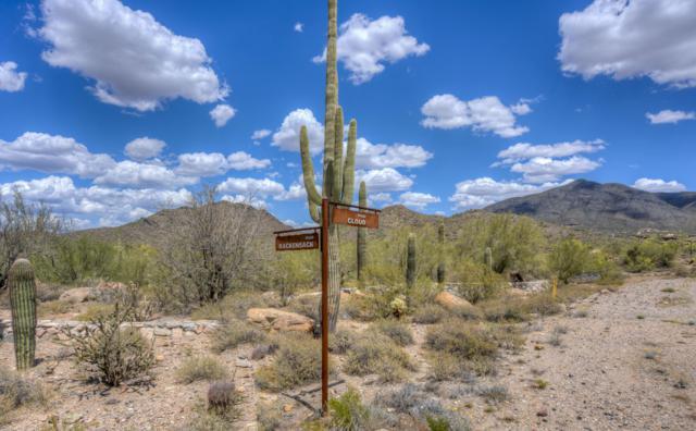 36233 N Rackensack Road, Cave Creek, AZ 85331 (MLS #4709800) :: The Laughton Team
