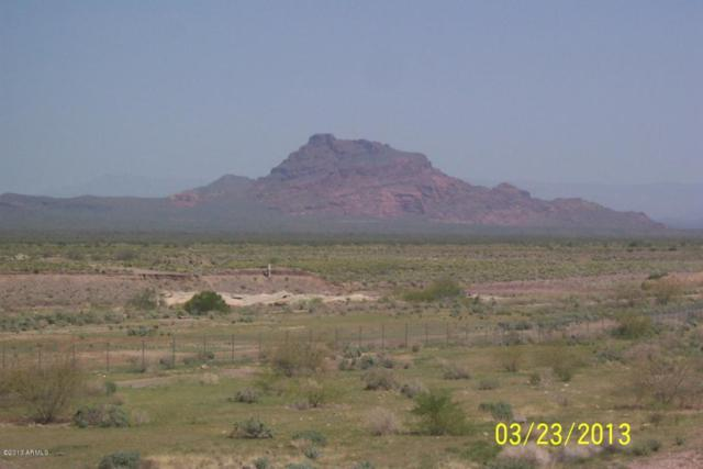No Situs E Thomas Road, Mesa, AZ 85213 (MLS #4914428) :: Riddle Realty