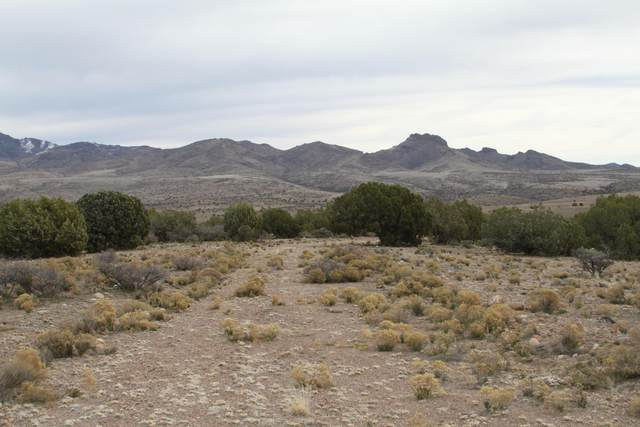Lot 245 Prairie Schooner, Wikieup, AZ 85360 (MLS #5386584) :: The Ellens Team