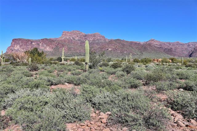 6878 E Diamondback Lane, Apache Junction, AZ 85119 (MLS #5397778) :: The Kenny Klaus Team