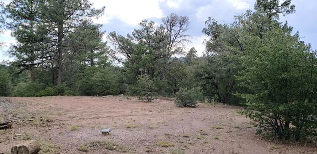 8B N Chamberlain Trail, Young, AZ 85554 (MLS #5509847) :: Riddle Realty Group - Keller Williams Arizona Realty