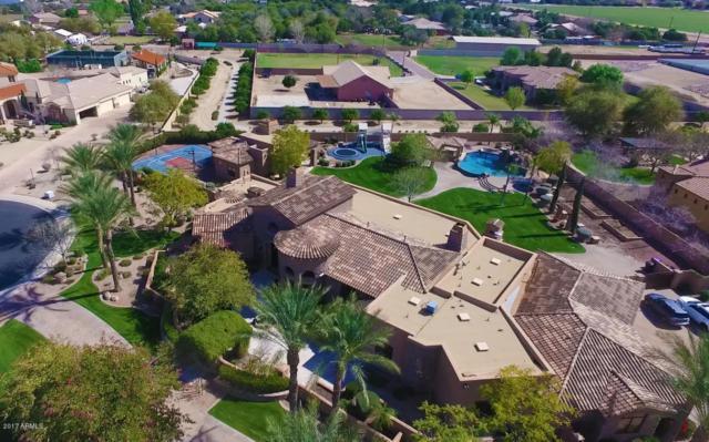 7065 S Star Drive, Gilbert, AZ 85298 (MLS #5562047) :: Occasio Realty