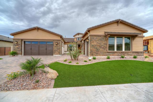 2366 E Mahogany Place, Chandler, AZ 85249 (MLS #5591858) :: Occasio Realty