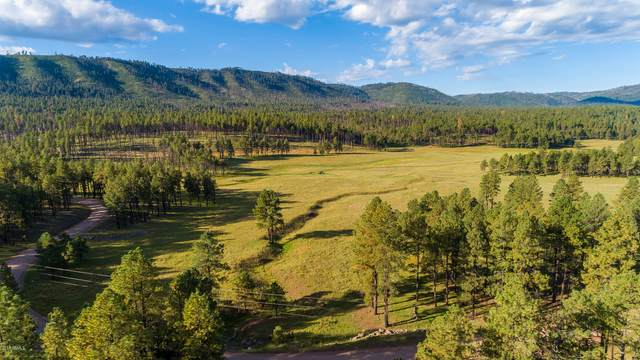0 Beaver Creek Fr, Alpine, AZ 85920 (MLS #5602204) :: Revelation Real Estate