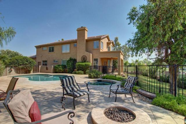 2101 W Rockrose Place, Chandler, AZ 85248 (MLS #5603635) :: The Bill and Cindy Flowers Team