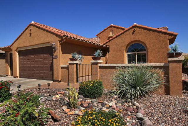 6900 W Patriot Way, Florence, AZ 85132 (MLS #5605985) :: RE/MAX Home Expert Realty