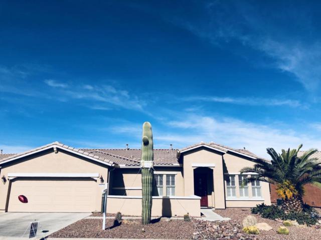 42624 W Sandpiper Drive, Maricopa, AZ 85138 (MLS #5661333) :: Yost Realty Group at RE/MAX Casa Grande