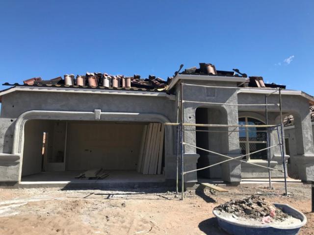 12012 W Lone Tree Trail, Peoria, AZ 85383 (MLS #5670413) :: Occasio Realty