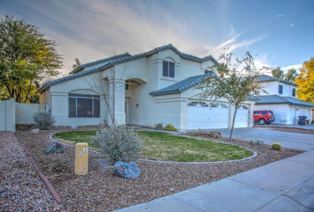 1213 N Newport Street, Chandler, AZ 85225 (MLS #5703690) :: Occasio Realty
