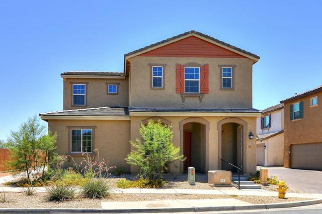 14987 W Wilshire Drive, Goodyear, AZ 85395 (MLS #5713092) :: Occasio Realty