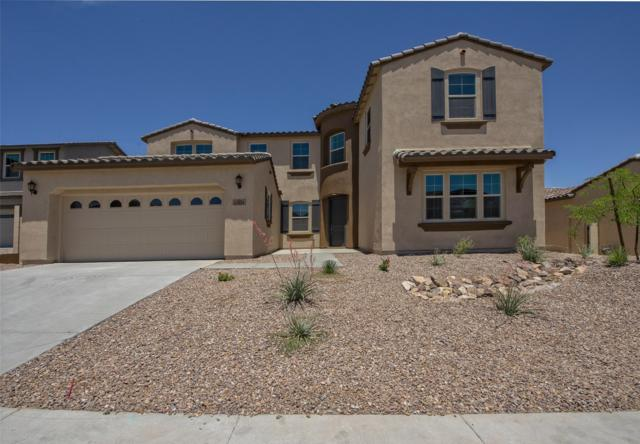 13854 W Sarano Terrace, Litchfield Park, AZ 85340 (MLS #5720833) :: The Garcia Group