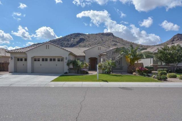 5633 W Spur Drive, Phoenix, AZ 85083 (MLS #5724853) :: Occasio Realty