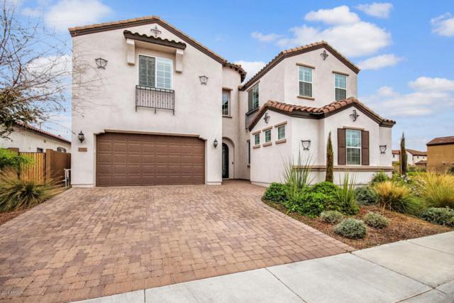 2102 E Kesler Lane, Chandler, AZ 85225 (MLS #5725425) :: Occasio Realty