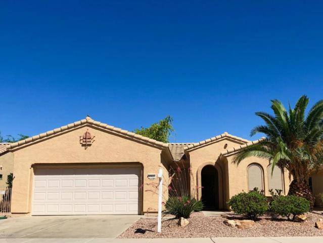 15020 W Hickory Court, Surprise, AZ 85374 (MLS #5755819) :: My Home Group