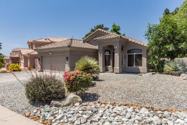 6136 W Irma Lane, Glendale, AZ 85308 (MLS #5757763) :: The Garcia Group