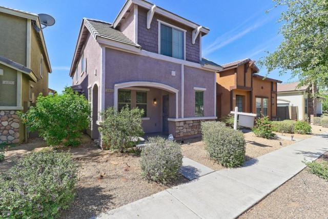 4373 E Selena Drive, Phoenix, AZ 85050 (MLS #5759569) :: Essential Properties, Inc.
