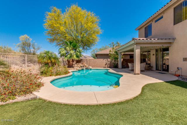 5918 W Spur Drive, Phoenix, AZ 85083 (MLS #5760346) :: My Home Group