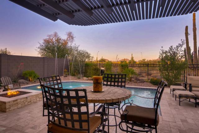 23121 N 47TH Street, Phoenix, AZ 85050 (MLS #5768828) :: My Home Group