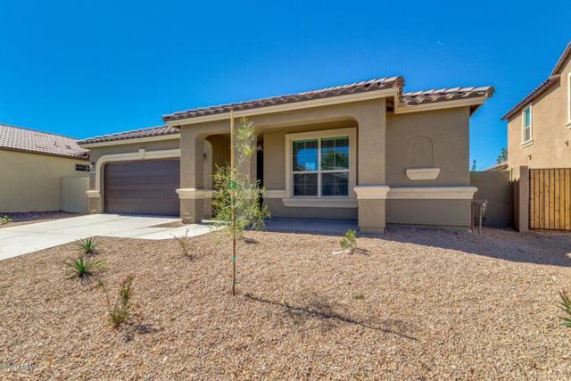 42213 W Santa Fe Street, Maricopa, AZ 85138 (MLS #5774276) :: Revelation Real Estate