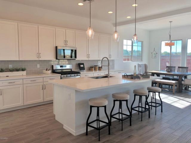 12260 N 145TH Avenue, Surprise, AZ 85379 (MLS #5789890) :: Arizona 1 Real Estate Team