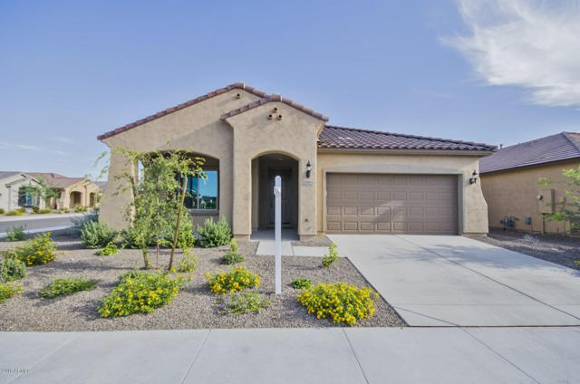 25925 W Tonto Lane, Buckeye, AZ 85396 (MLS #5799370) :: The Garcia Group @ My Home Group