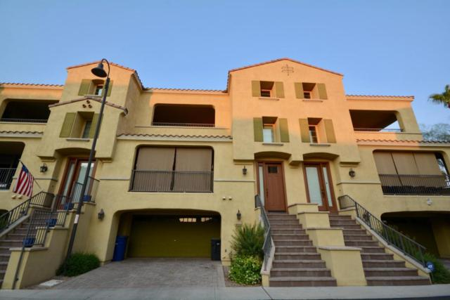 819 N Alison Way, Chandler, AZ 85226 (MLS #5800031) :: Conway Real Estate