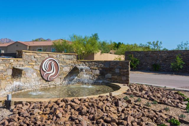 11791 N 114TH Way, Scottsdale, AZ 85259 (MLS #5805742) :: Revelation Real Estate