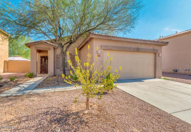 9201 W Cambridge Avenue, Phoenix, AZ 85037 (MLS #5805939) :: Gilbert Arizona Realty