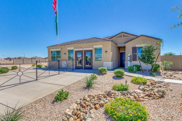 2409 E San Gabriel Trail, Casa Grande, AZ 85194 (MLS #5808746) :: Arizona 1 Real Estate Team