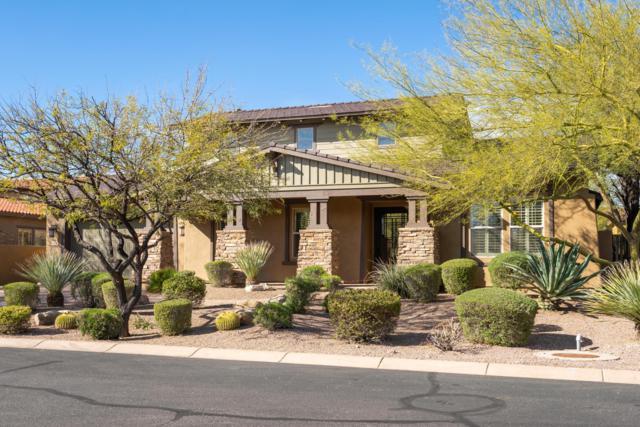 9488 E Canyon View Road, Scottsdale, AZ 85255 (MLS #5809479) :: RE/MAX Excalibur