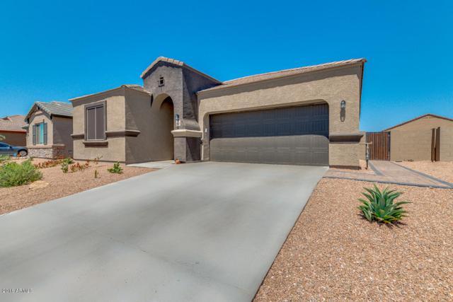 23772 W Mohave Street, Buckeye, AZ 85326 (MLS #5812837) :: Occasio Realty