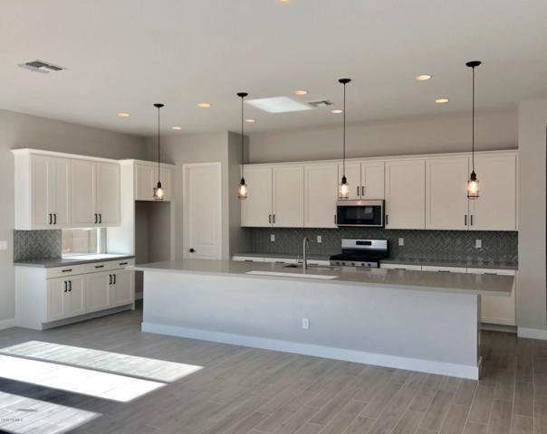 12873 N 143RD Drive, Surprise, AZ 85379 (MLS #5819205) :: Arizona 1 Real Estate Team