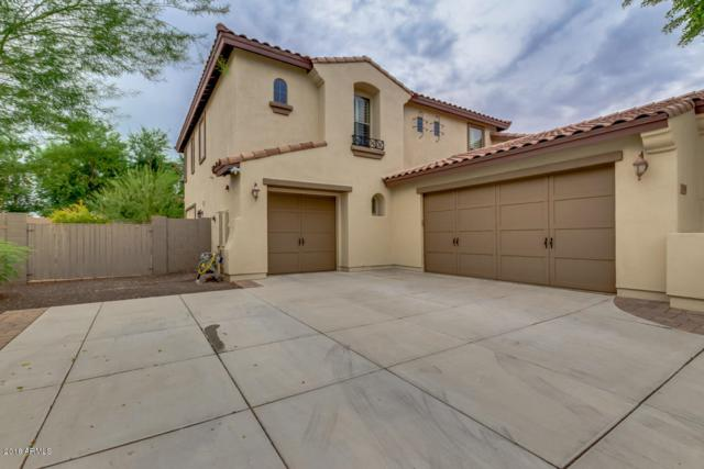 13091 W Chucks Avenue, Peoria, AZ 85383 (MLS #5824151) :: The Property Partners at eXp Realty