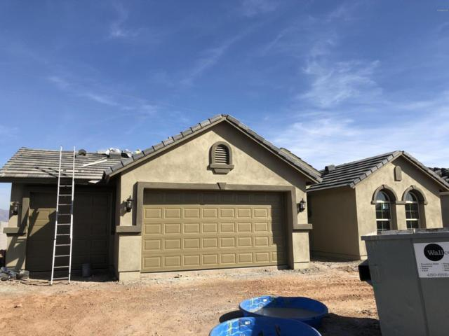 4939 S Brice Circle, Mesa, AZ 85212 (MLS #5832842) :: Lifestyle Partners Team