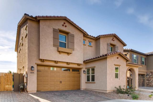 4711 E Daley Lane, Phoenix, AZ 85050 (MLS #5833597) :: Keller Williams Realty Phoenix
