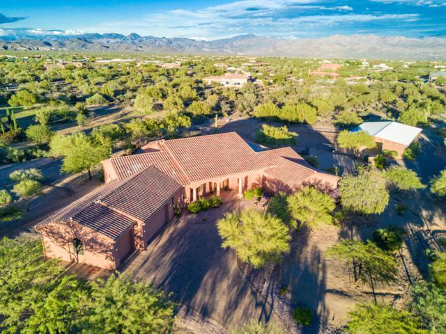 29921 N Baker Court, Scottsdale, AZ 85262 (MLS #5835870) :: Team Wilson Real Estate