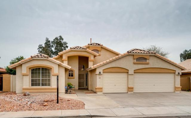 2405 N 127TH Avenue, Avondale, AZ 85392 (MLS #5837831) :: Yost Realty Group at RE/MAX Casa Grande