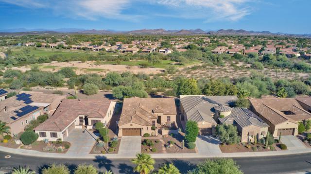 27829 N 130th Drive, Peoria, AZ 85383 (MLS #5839442) :: CC & Co. Real Estate Team