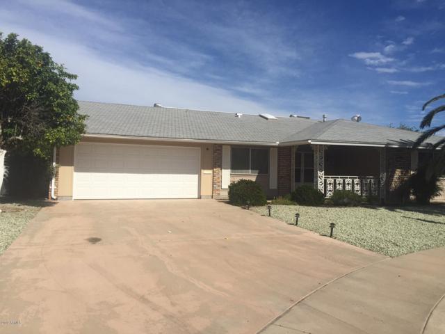 9207 W Pineridge Drive, Sun City, AZ 85351 (MLS #5843973) :: CC & Co. Real Estate Team