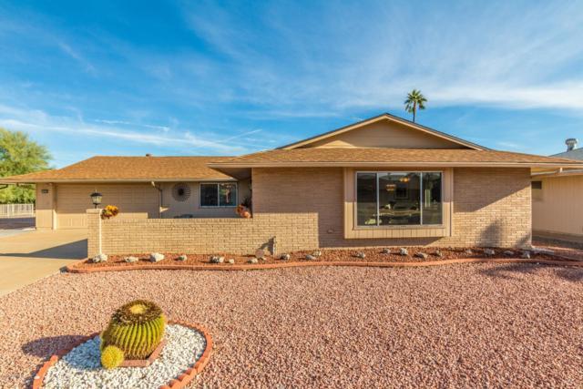 10420 W Desert Rock Drive, Sun City, AZ 85351 (MLS #5846906) :: Occasio Realty