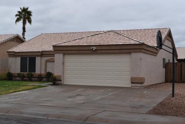 2346 E Cathy Court, Gilbert, AZ 85296 (MLS #5850062) :: The W Group