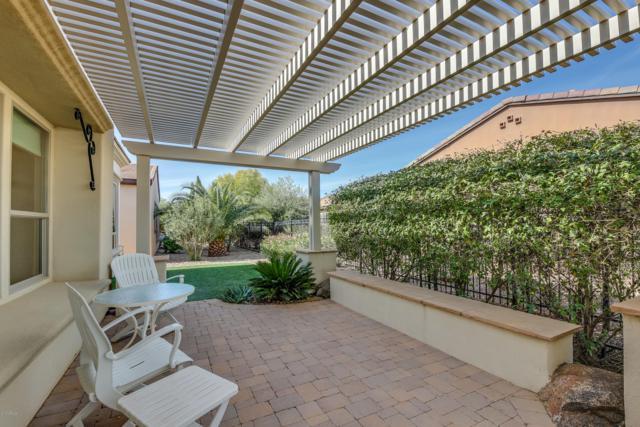 1802 E Harmony Way, San Tan Valley, AZ 85140 (MLS #5850344) :: The Daniel Montez Real Estate Group