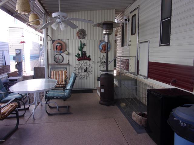 333 S Shoshone Drive, Apache Junction, AZ 85119 (MLS #5859385) :: The Kenny Klaus Team